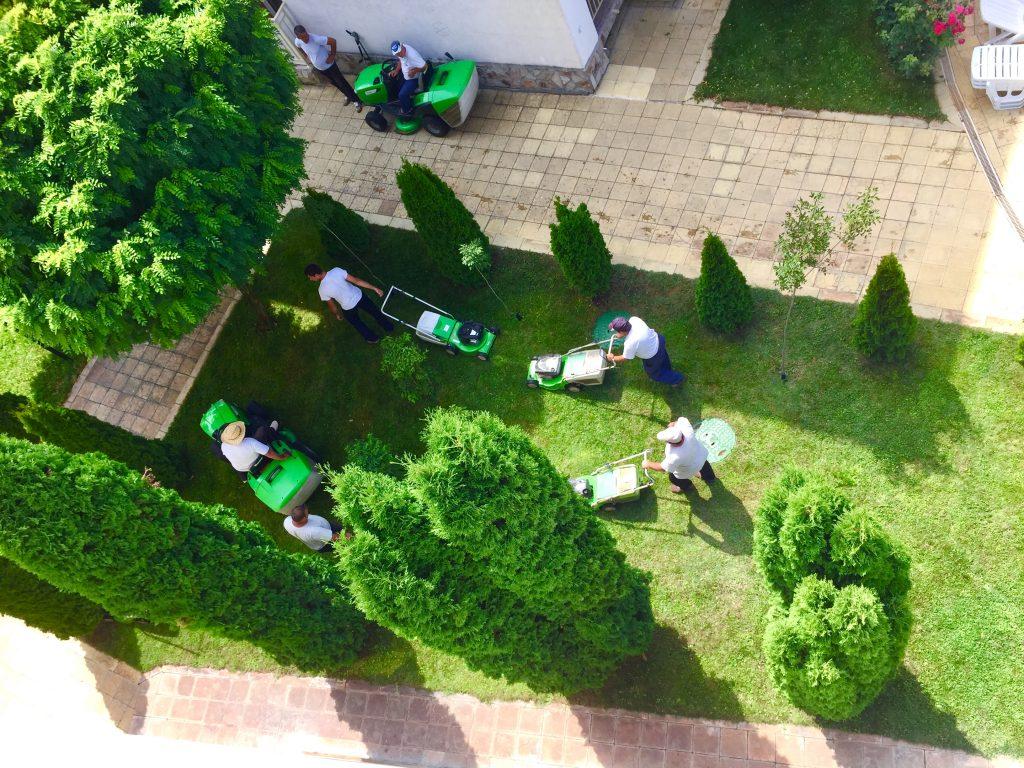 Что такое такса поддержки в Болгарии