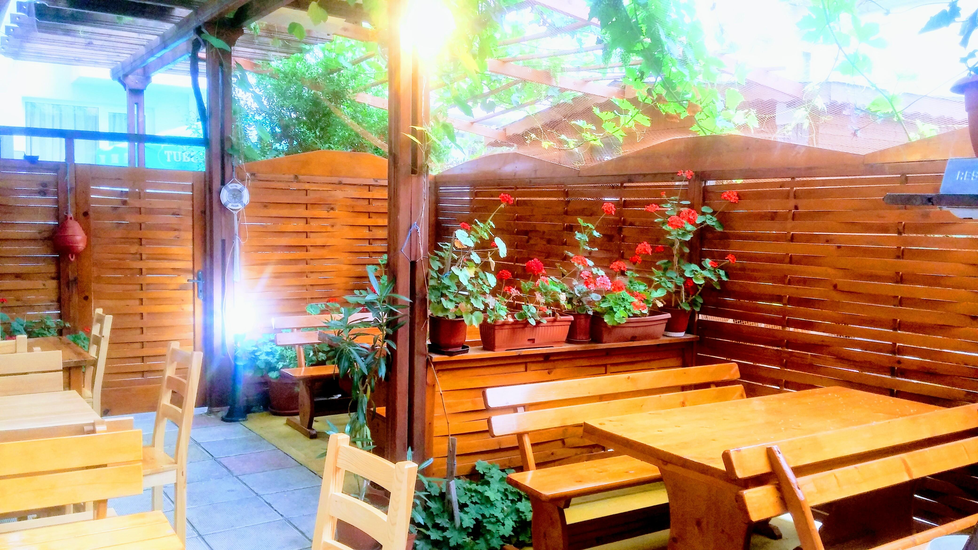 Рыбный Ресторан Нептун, рыбная кухня, Солнечный Берег