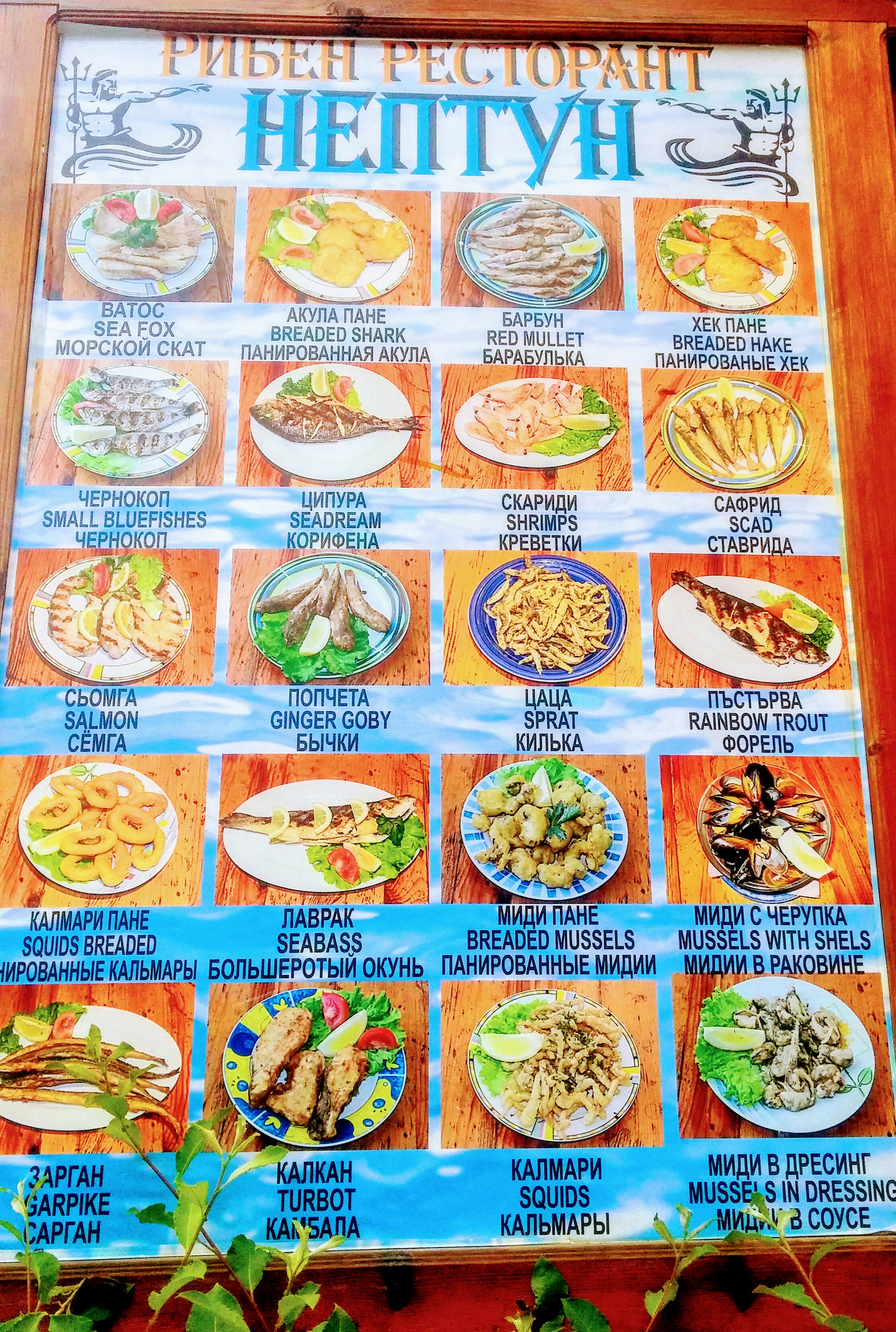 меню ресторан Нептун